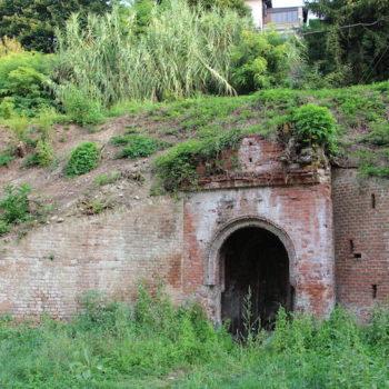 un-parco-dei-giusti-alla-fontana-palocca_articleimage